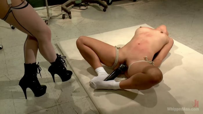 Aiden Starr in Perverted, Inverted, and Begging for Mo ...