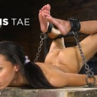 Alexis Tae in 'Alexis Tae: Exploring The Dark Side of Porn'