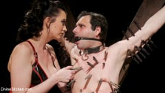 Cherry Torn - A Divine New Years: Cherry Torn celebrates with slave's screams | Picture (4)