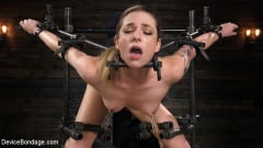 Dahlia Sky - Blonde Damsel is Distressed in Brutal Devices and Tormented | Picture (5)