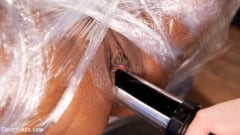 Daisy Ducati - The Squirt Collector: Daisy Ducati squirts for science! | Picture (9)