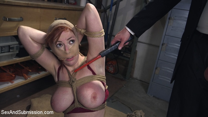Lauren Phillips - The Reformer, One Man's Quest for the Perfect Pussy | Picture (1)