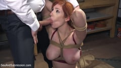 Lauren Phillips - The Reformer, One Man's Quest for the Perfect Pussy | Picture (3)