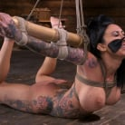 Lily Lane in 'Tattooed Slut Brutalized in Bondage and has Squirting Orgasms'