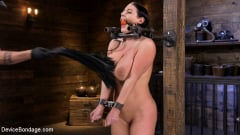 Angela White - Angela White Begs to Suffer For Her Master in Metal Bondage | Picture (2)