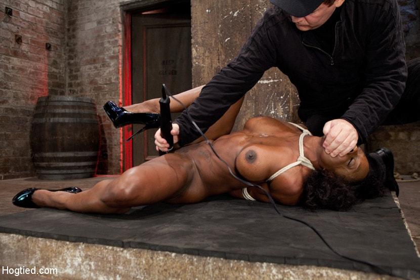 Pecpanther BDSM