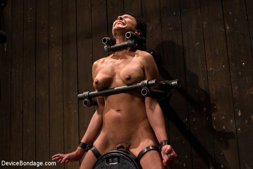 Free device bondage porn images