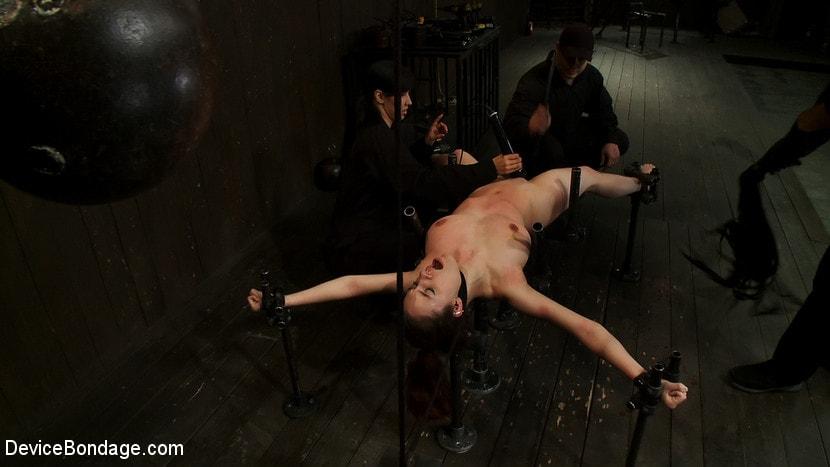 Device bondage shows for free — img 11