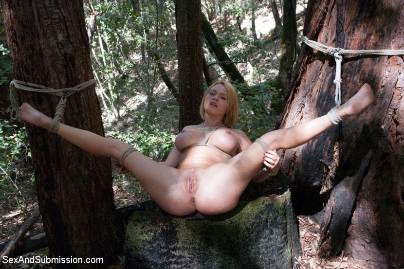 смотреть порно ролики привязали к дереву полезной